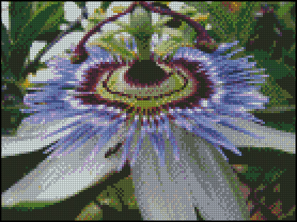Esquema de Flores en Punto de Cruz