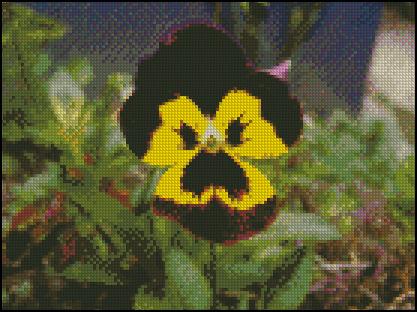 Esquema de Flor en Punto de Cruz (5)