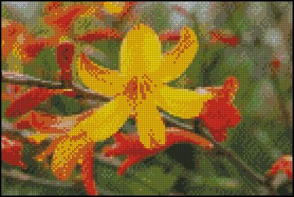 Esquema de Flor en Punto de Cruz (9)