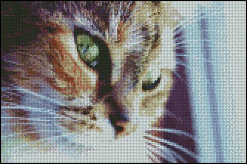 Esquema de Gatos en Punto de Cruz (6)