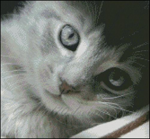 Esquema de Gatos en Punto de Cruz (7)