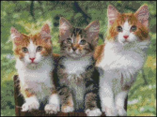 Esquema de Gatos en Punto de Cruz (8)
