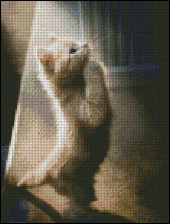 Esquema de Gatos en Punto de Cruz (9)