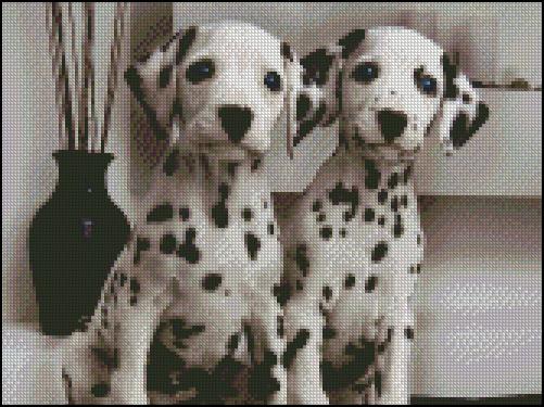 Esquema de Perros (12)