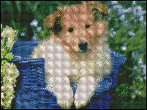 Esquema de Perros (3)